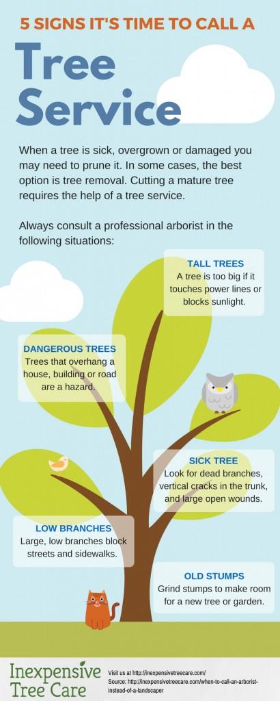 Call a Tree Service
