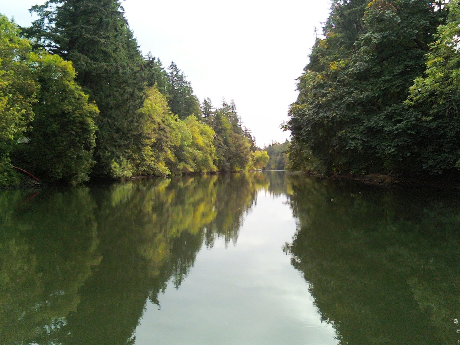 planting 1 million trees for the tualatin river