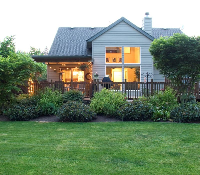 Why yard renovations start with proper tree care