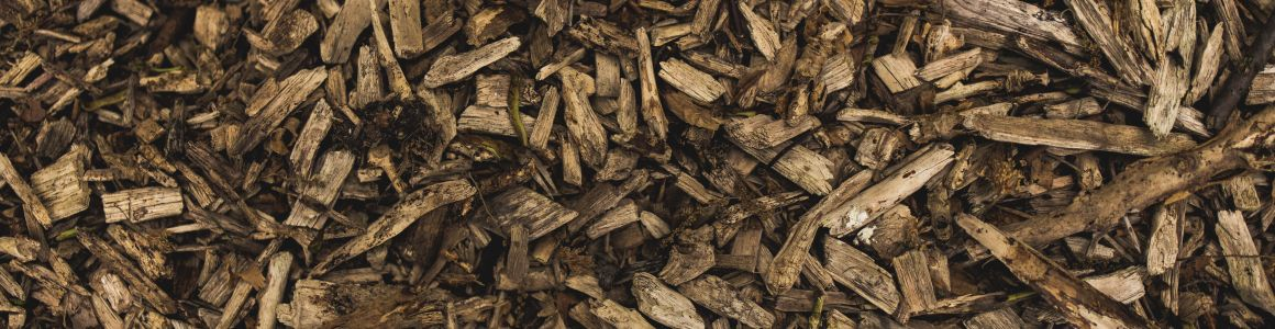 Nourishing Your Trees with Organic Mulch