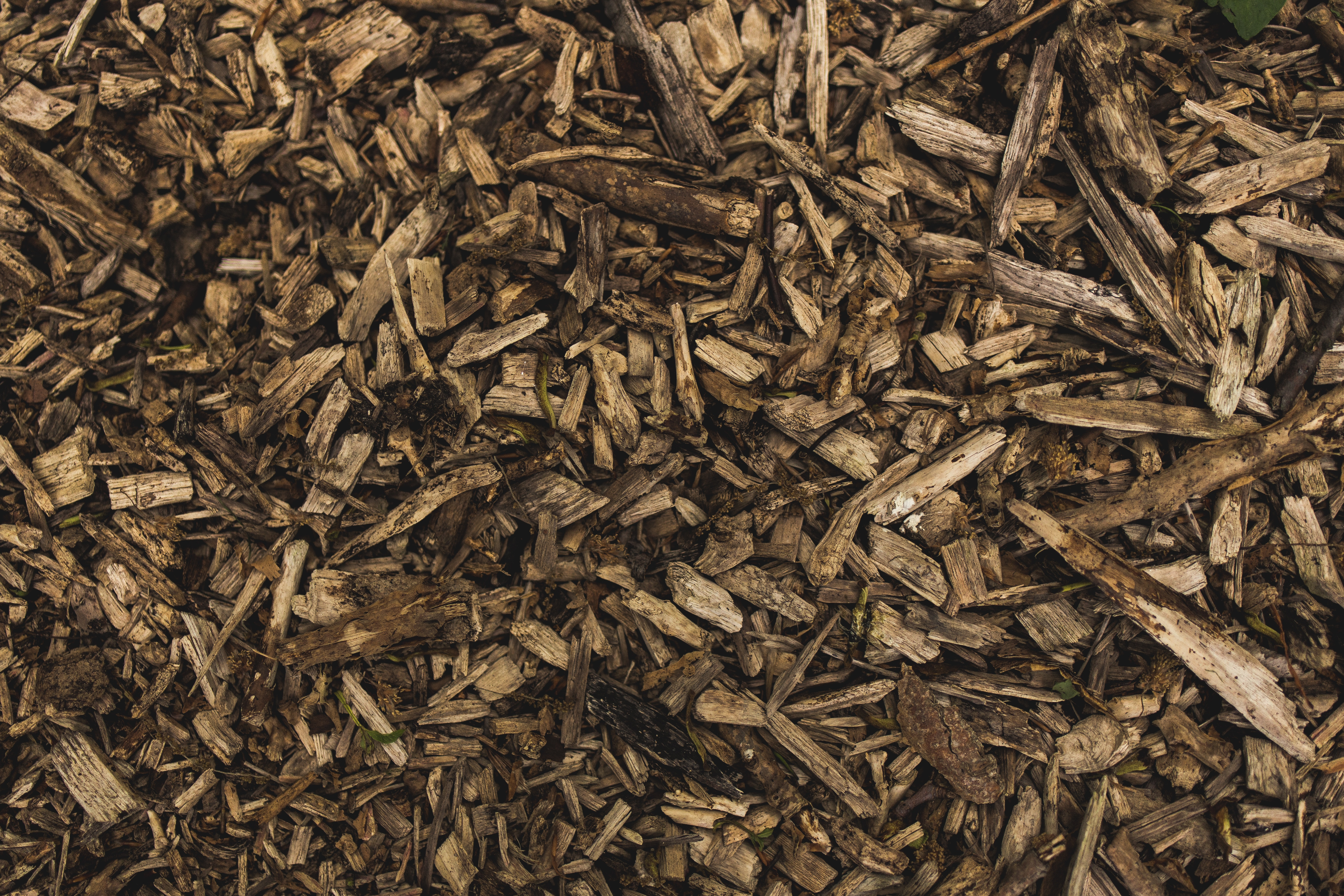 organic-mulch