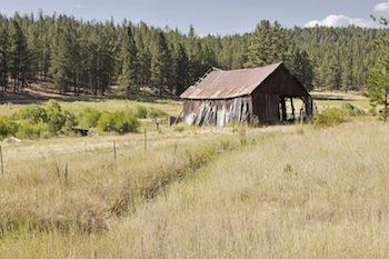 A dilapidated farm house in Oregon City